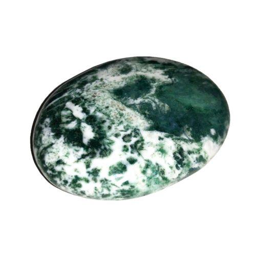 tree-agate-pebbles