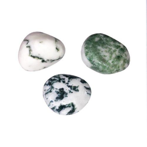 Tree Agate tumbled stones
