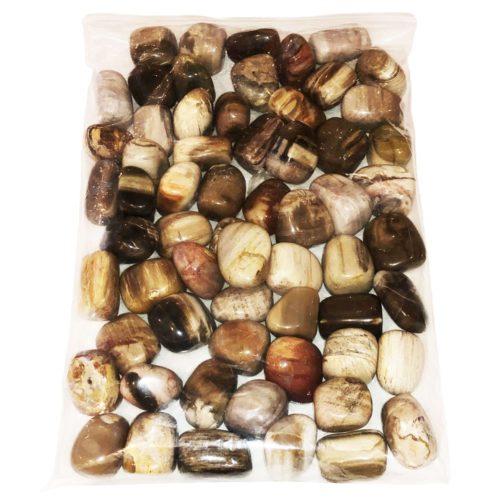 1 kg bag of petrified wood tumbled stones