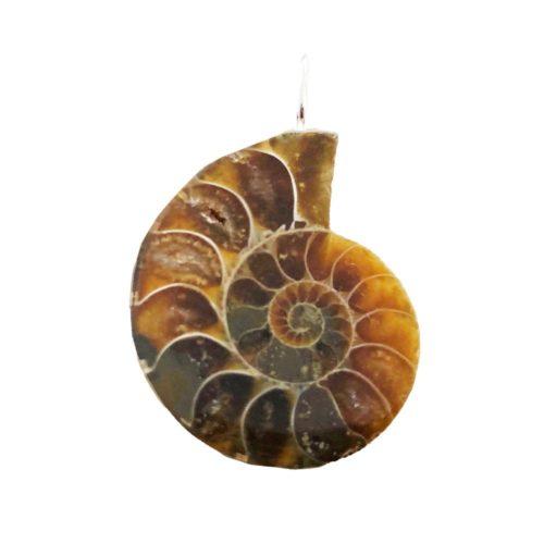 pendentif-ammonite-pierre-brute